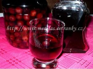 Nakládání ovoce do alkoholu